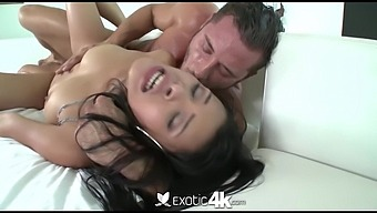 Lewd Latin Girl Josie Jagger Gets Her Cunt Rammed After Steamy Blowjob Session