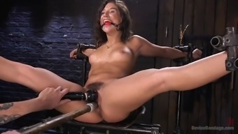 Fucked Right Up Weirdo Immobilizes Ripe Abella Risk And Despair Her Furry Cherry