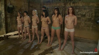 Six Beautiful Girls Get Bound And Embarassed Shamed Disgraced Right By Their Get Good At