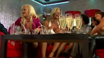 Hen Do Of Hearty Smashed Milfs Winds Up Along With Wilderness Rearrange Team Bang
