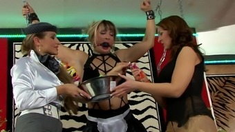 Femdom Lesbian Threesome By Using Chained Brown