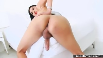 Large Tits Blond Shemale Paula B Jerks Off Her Very Difficult Penis