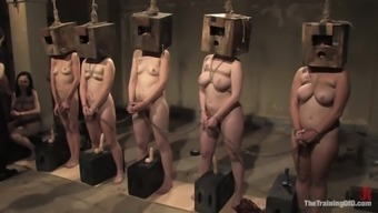 Submissve Ladies Please Their Personal Greats Within The Bondage Clip